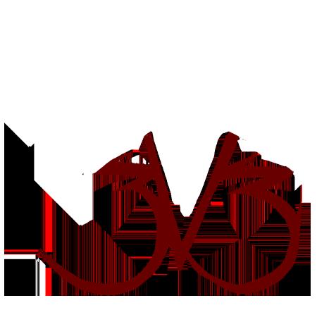 DMC 3v3