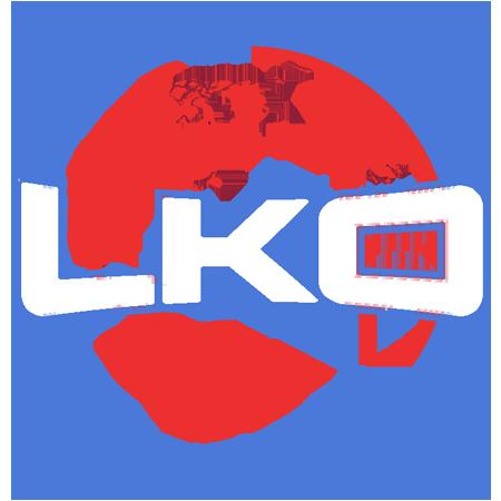 Low Kick Esports Logo